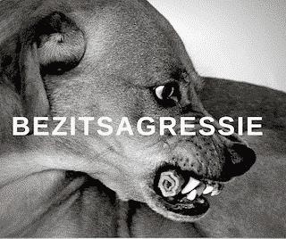 Online hondencursus bezitsagressie